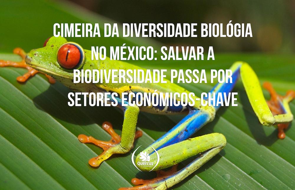 Cimeira da Diversidade Biomex