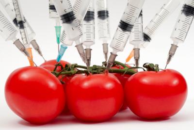 disruptores pesticidas endocrinos hormonales