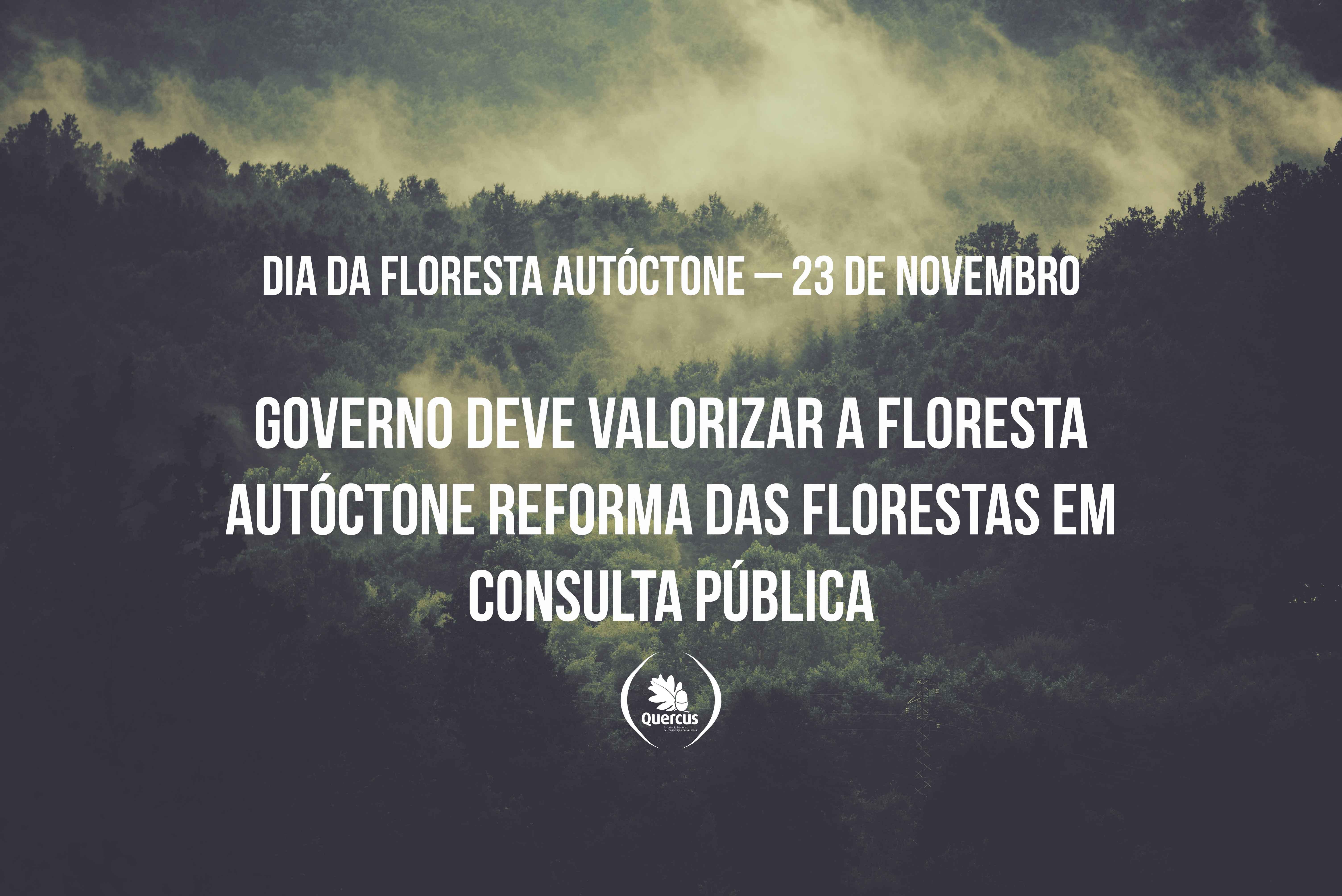 Dia da Floresta Autoctone 23 de Novembro Governo deve valorizar a Floresta Autoctone Reforma das Florestas em consulta publica