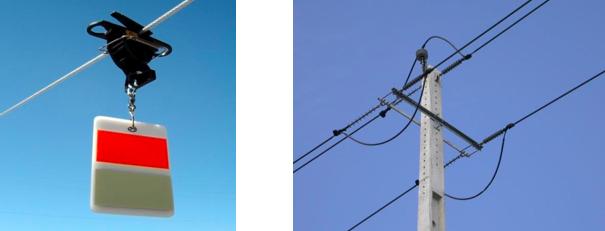 duas imagens linhas