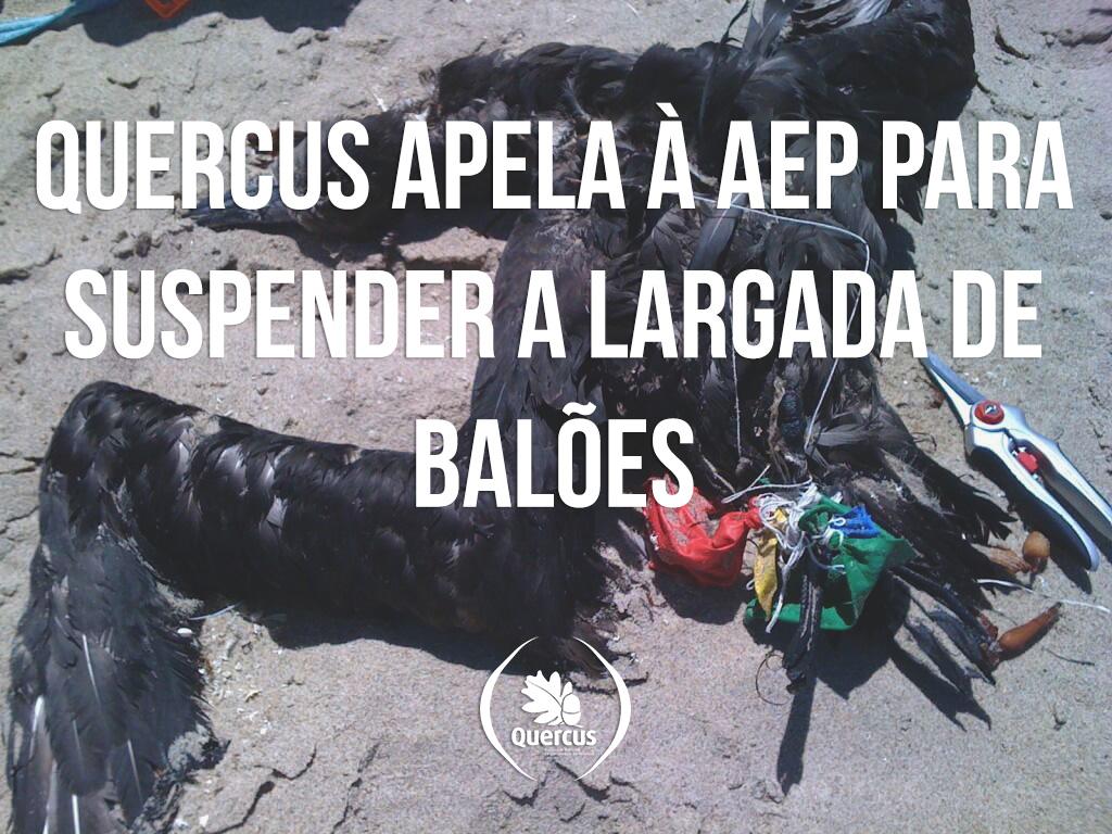 baloesquercus
